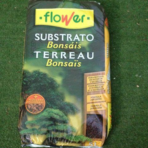 TIERRA 05L BONSAI FLOWER