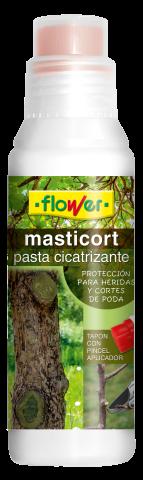 PASTA CICATRIZANTE 250GR FLOWER