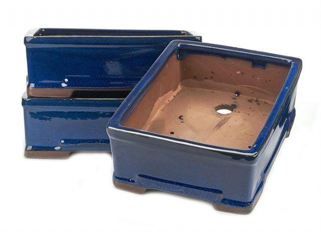 Tarrina Bonsái 25 rectangular azul Basic